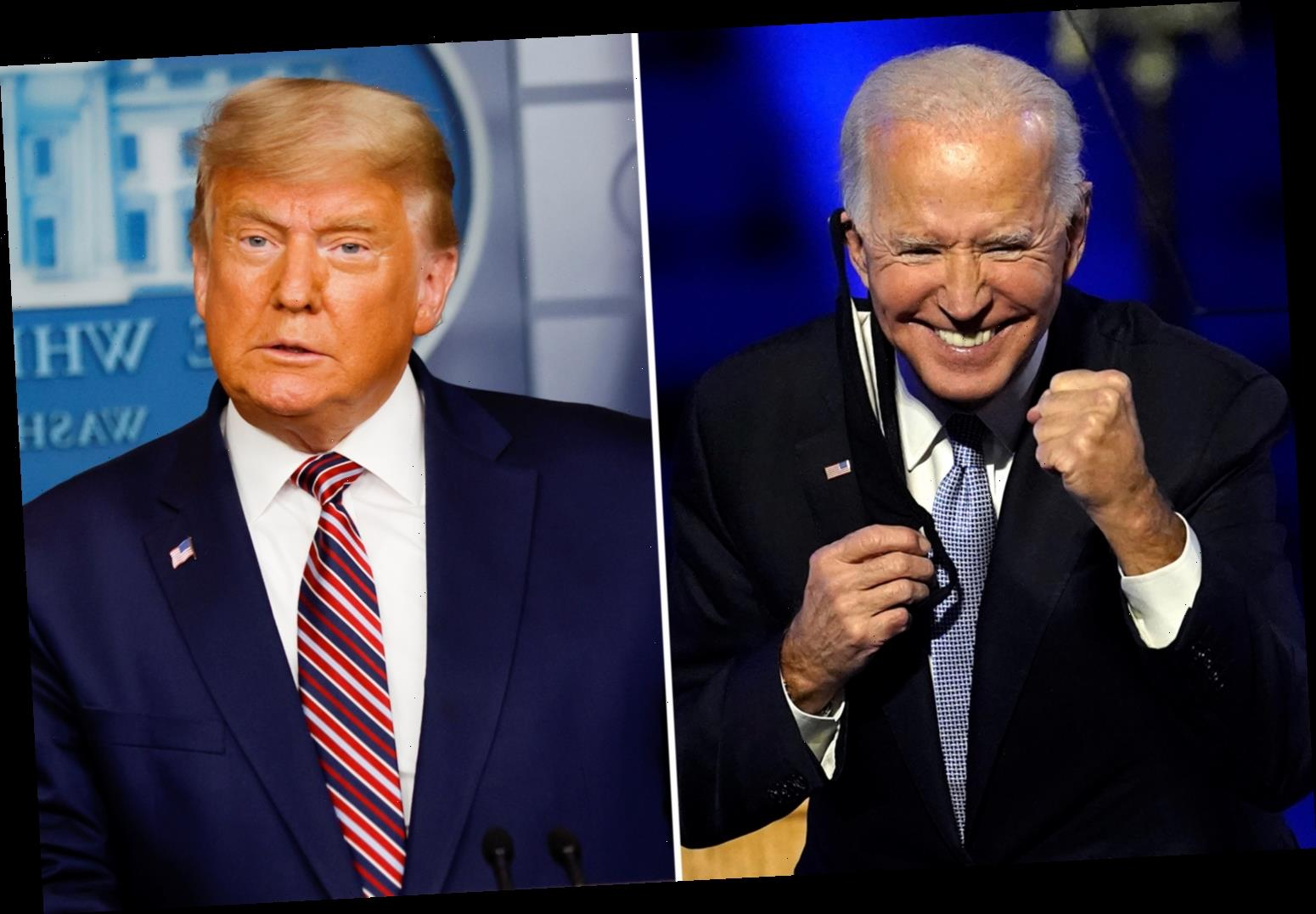 Nearly 80% of Americans accept Joe Biden won presidential election with just 3% saying Trump was re-elected, poll shows
