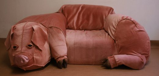 That Pig Couch on Craigslist? Not for Sale. (Also, Not a Couch.)
