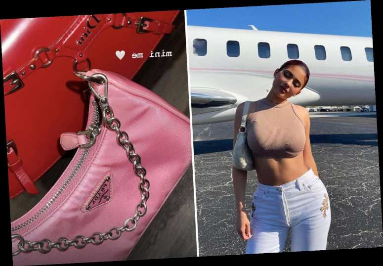 Kylie Jenner flaunts $72M jet and toddler Stormi's $800 Prada bag as fans shocked by her extreme wealth in tough times