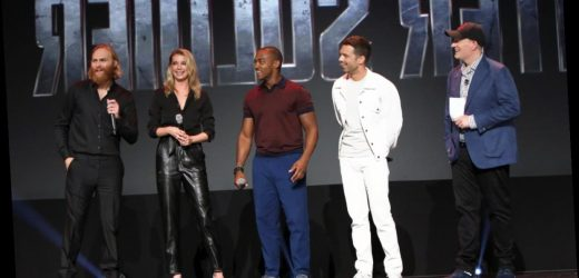 'The Falcon and the Winter Soldier' Star Emily VanCamp Confuses MCU Fans With Premiere Date Tease