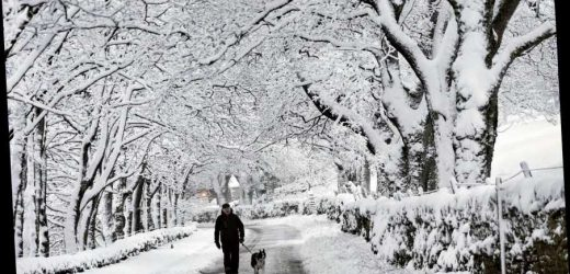 Snow odds: Will it be a white Christmas in 2020?