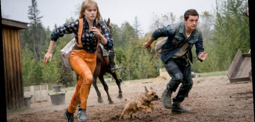Lionsgate Pushes Tom Holland-Daisy Ridley Sci-Fi YA Pic 'Chaos Walking' To March