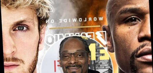 Snoop Dogg offers to commentate on Floyd Mayweather vs Logan Paul fight after earning rave reviews in Mike Tyson bout
