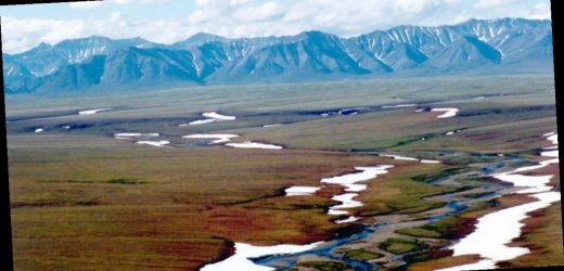 Trump administration moves forward with sale of oil and gas leases in Alaska's Arctic National Wildlife Refuge