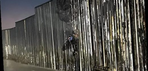 US border agents rescue Mexican migrant, 25, found hanging from wall