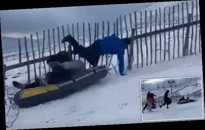 Runaway rubber DINGHY wipes out sledders at Scottish ski resort
