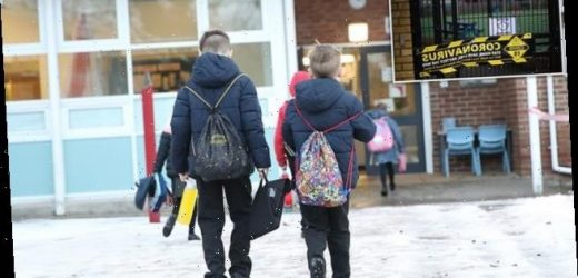Covid UK: Plans for daily Covid testing in English schools are halted