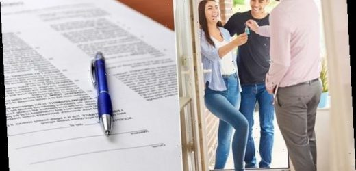 What do the new debt respite regulations mean for my rented property?