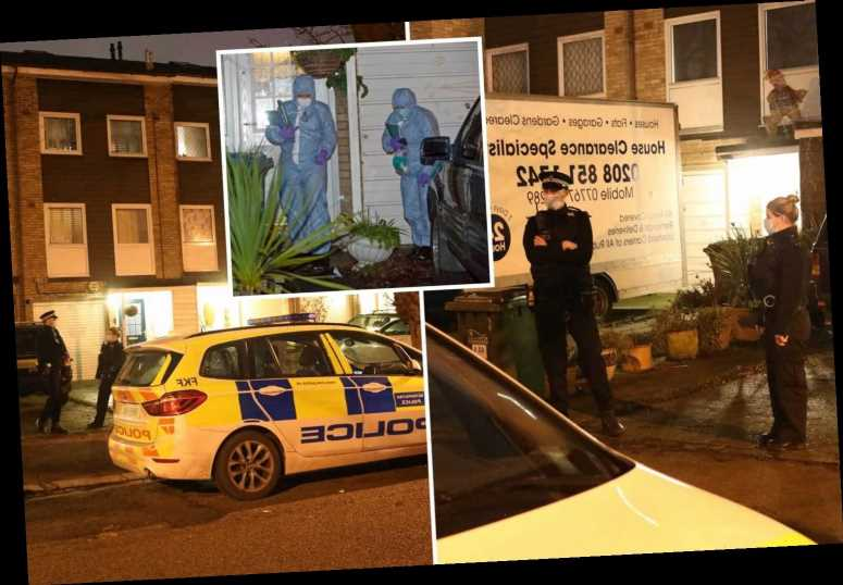 Pensioner, 74, stabbed to death as man, 23, arrested on suspicion of murder in South East London