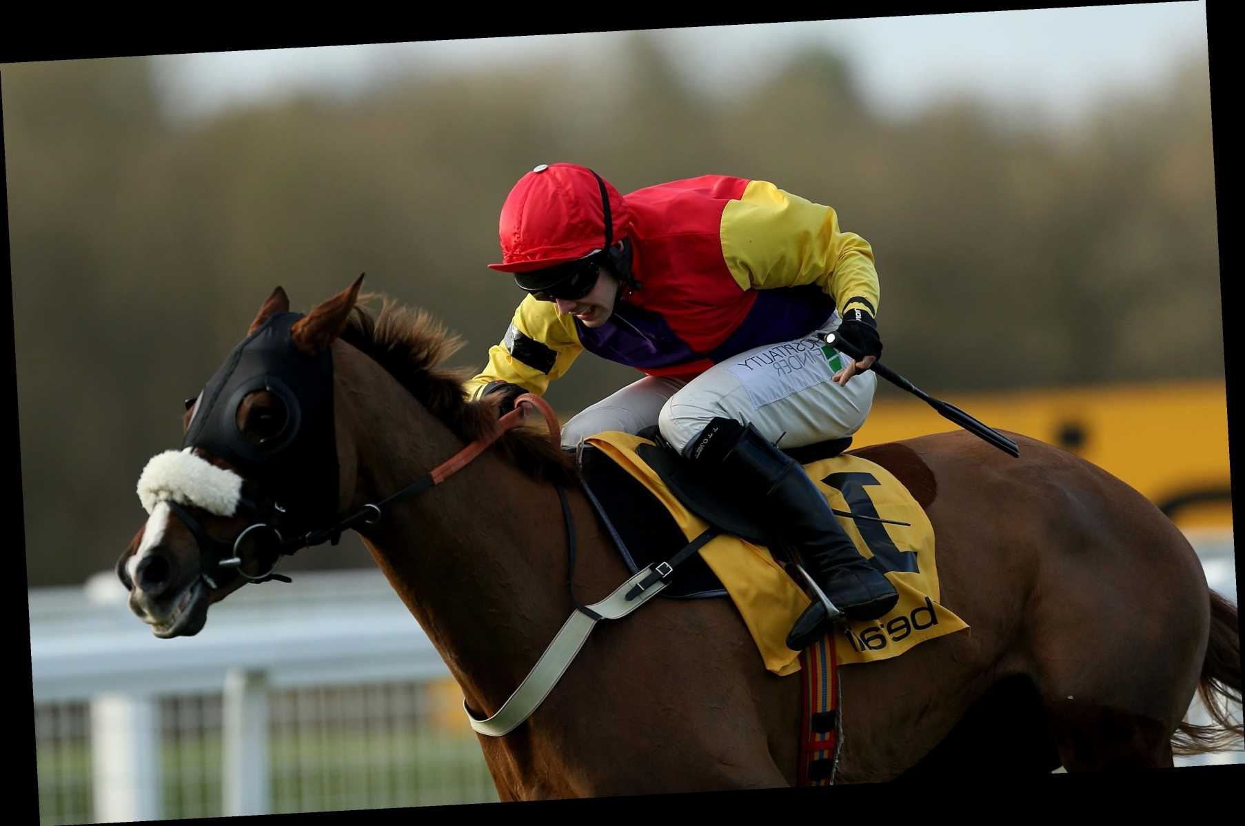 Former Gold Cup hero Native River 'full of himself' and ready to roll back the years at Cheltenham