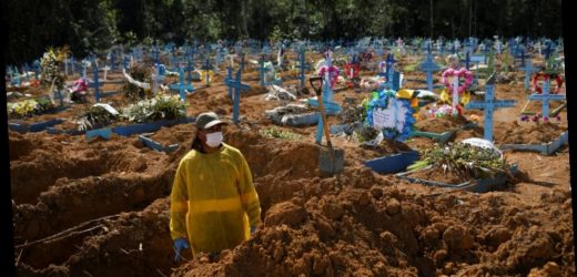 Brazil under siege from 'Amazon super-Covid' as deaths double and hospitals run out of oxygen