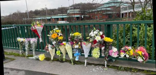 Uncle and nephew aged 20 and 24 killed in crash after car ploughed through barrier and plunged into river