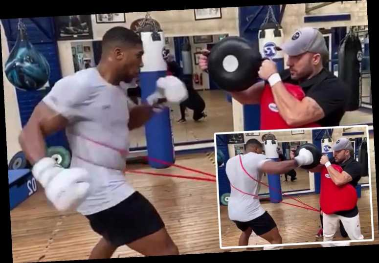 Anthony Joshua practises new left hook he aims to K.O Tyson Fury with 'instead of uppercut' as contract talks rumble on