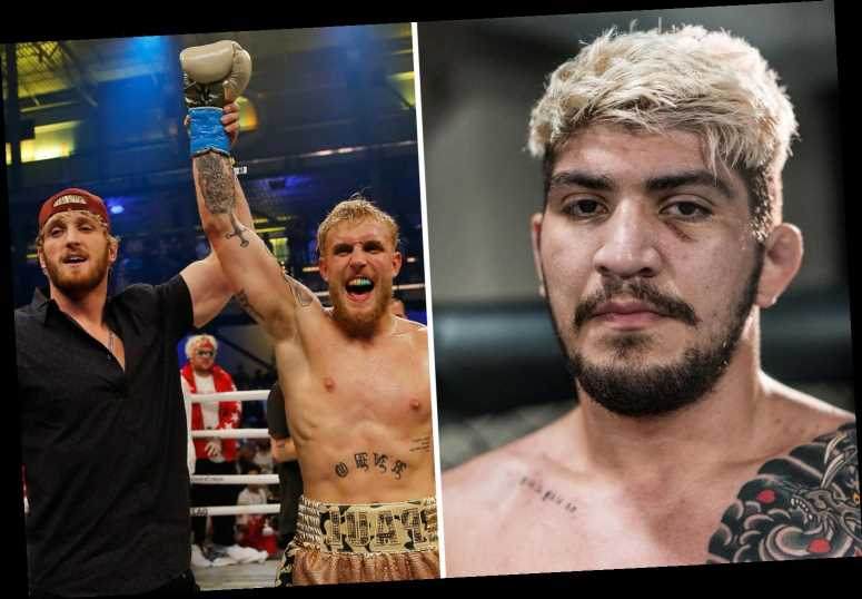 Conor McGregor training partner Dillon Danis will '100 per cent' fight Jake or Logan Paul in boxing or MMA match