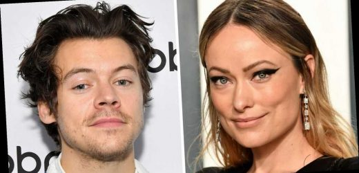 Olivia Wilde and Harry Styles Were Spotted Holding Hands