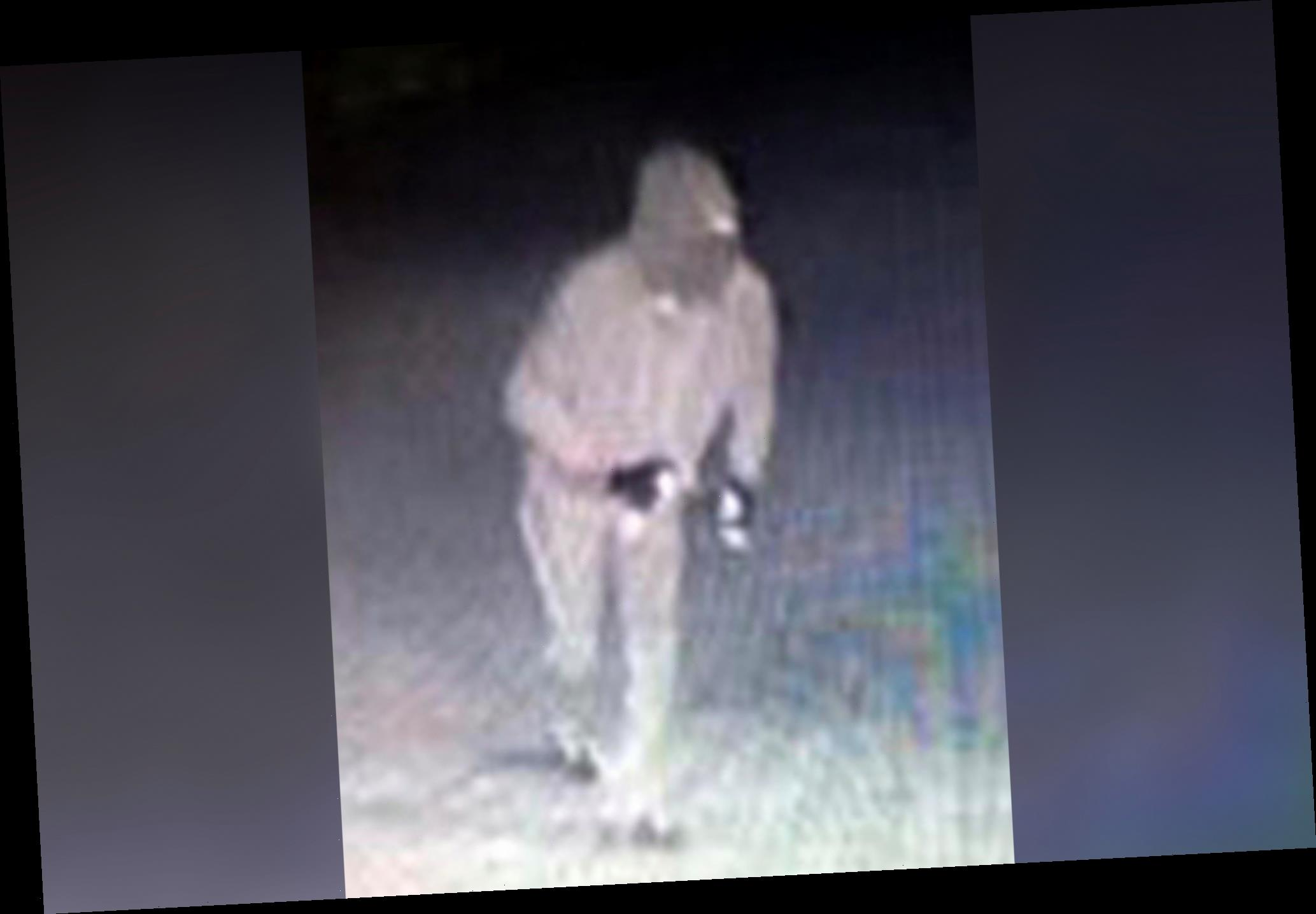 Police hunting for one-legged synagogue vandal in Alabama