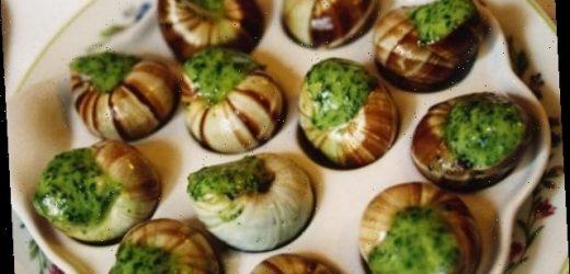 French snail farmers lament sluggish year as Covid crisis dents sales