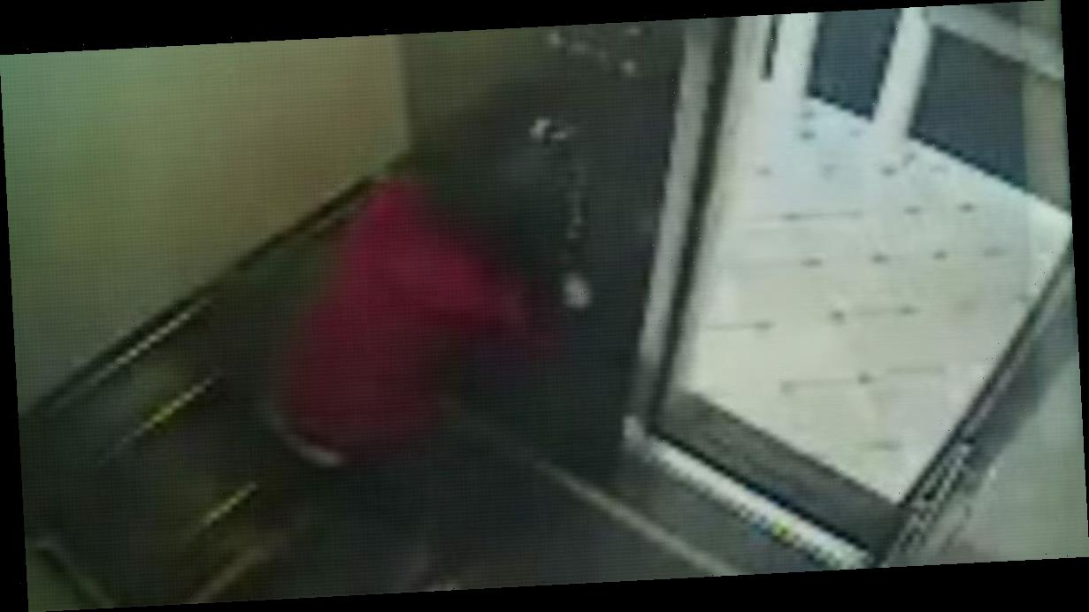 Elisa Lam's spooky elevator CCTV clip spawn wild theories