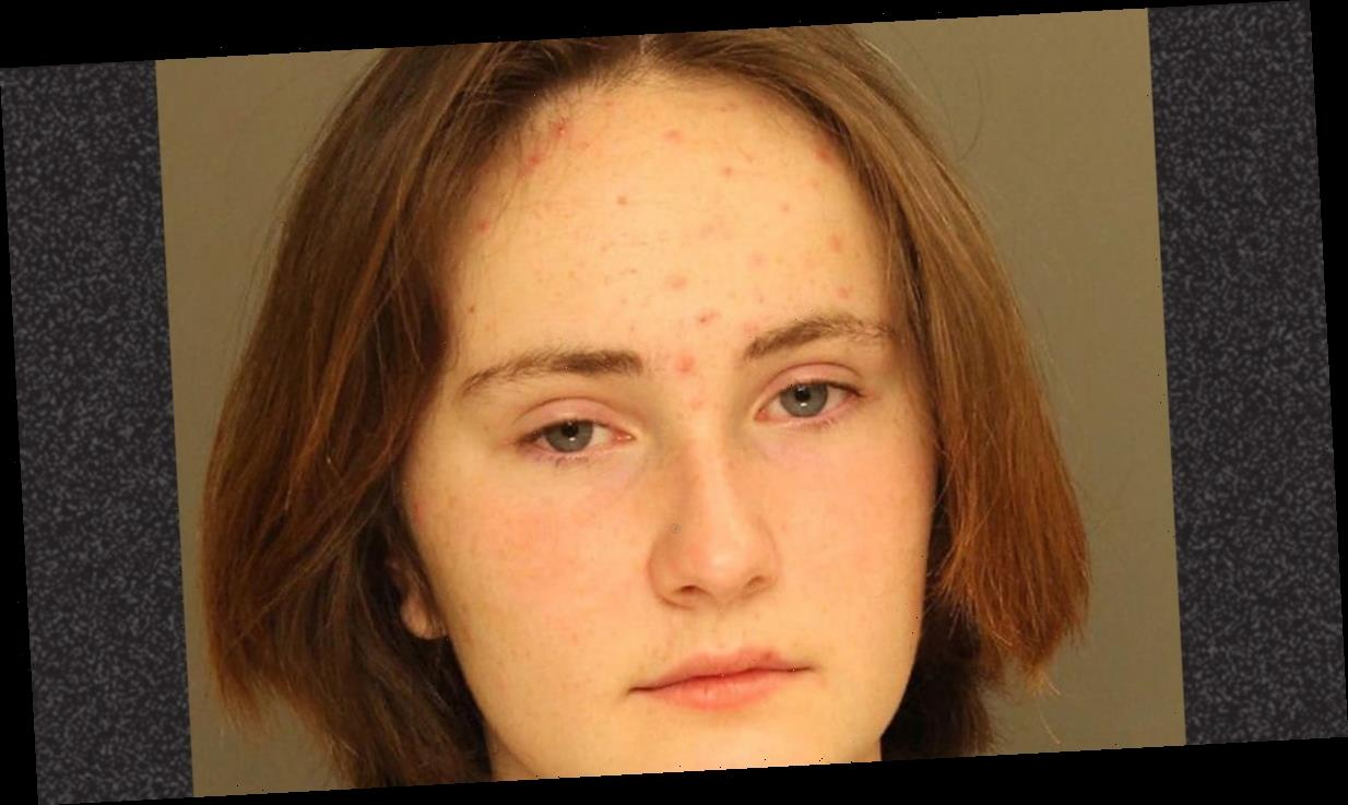 Pennsylvania 14-Year-Old Charged With Stabbing Big Sister to Death While Parents Slept