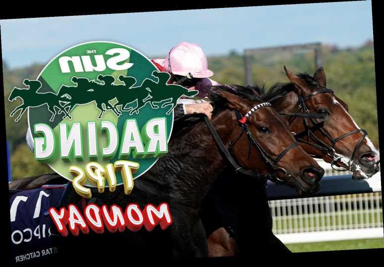 Horse racing tips: Templegate NAP can strike at Wolverhampton plus best bets at Plumpton