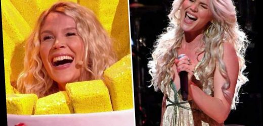 Who is Joss Stone and is she pregnant?
