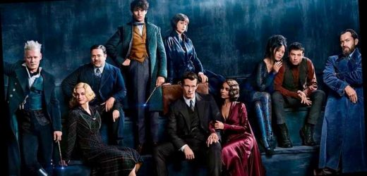 Fantastic Beasts 3 Halts Filming After Positive COVID-19 Test