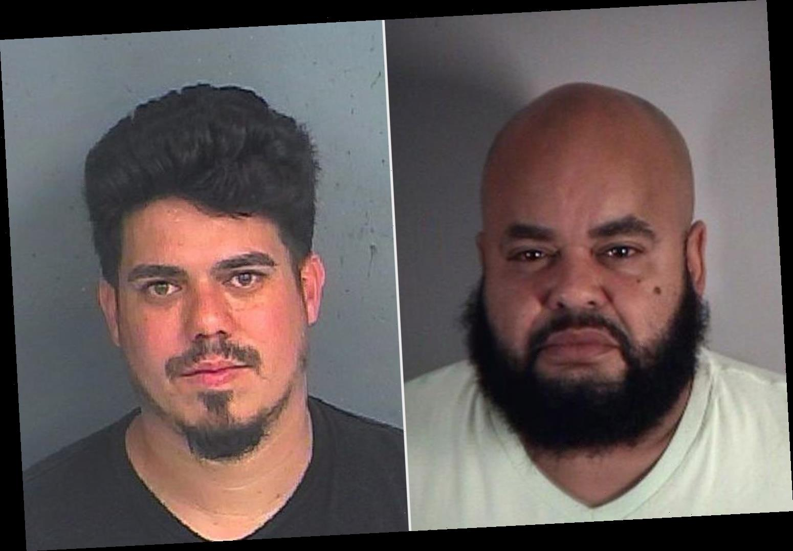 2 Men Arrested After TikTok Video Shows Allegedly Illegal Surgery Being Performed on Pregnant Dog