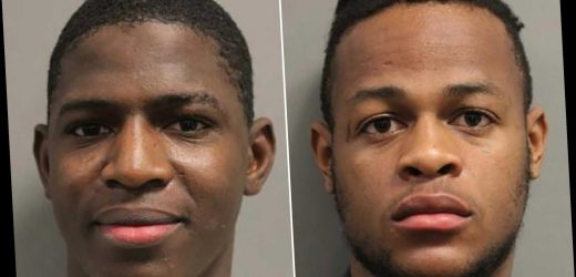 Two brothers busted in elaborate social media 'stabbing' hoax
