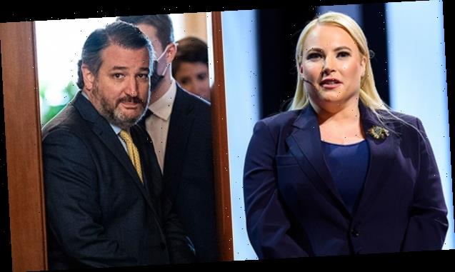 Meghan Mc Cain Calls Ted Cruz 'Marie Antoinette' As He Flies To Cancún While Texans Freeze