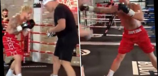 Watch Jake Paul in training to fight ex-UFC star Ben Askren as sparring partner warns YouTuber has 'knockout power'