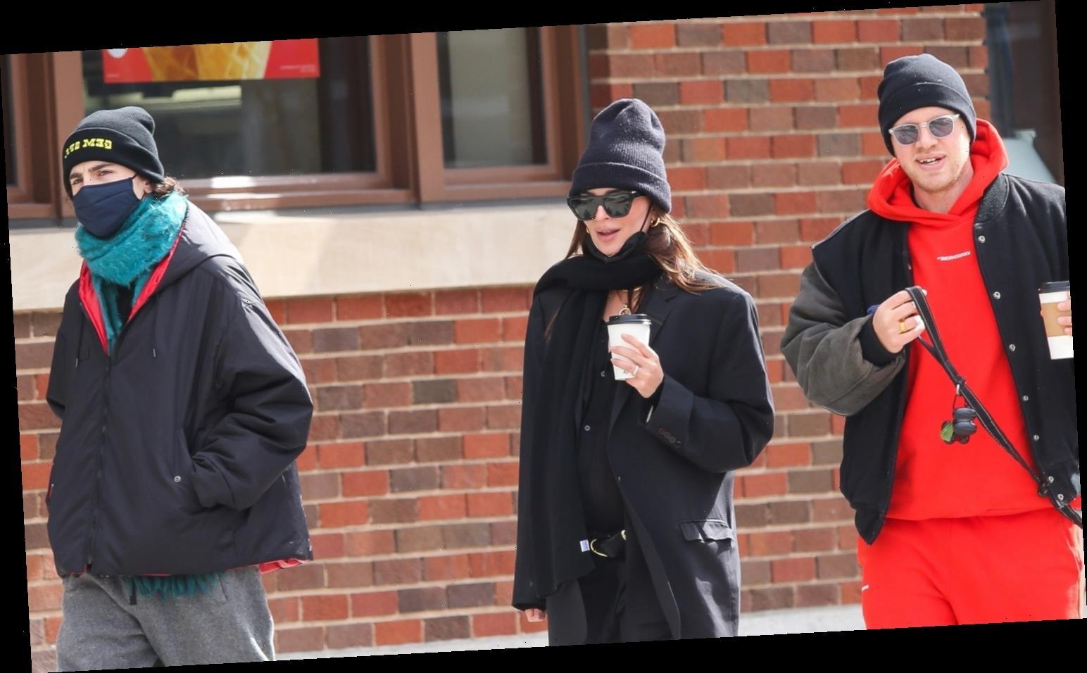 Timothee Chalamet Runs Into Emily Ratajkowski & Her Husband in New York City!