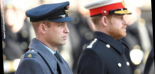 Prince William is 'sad and shocked' by Prince Harry, Meghan Markle's response to Queen Elizabeth: report