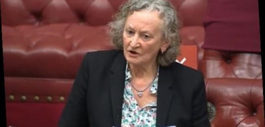 Green peer says men should face 6pm CURFEW after Sarah Everard murder