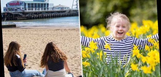 Britain in for 20C mini-scorcher as Rule of Six returns – and sunny spell to last NINE days