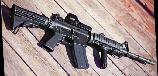 What does AR mean in AR15?