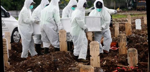 Spanish Flu pandemic that killed 50million could return as Covid may make seasonal outbreaks worse, WHO expert warns