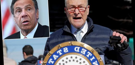 Schumer: Andrew Cuomo should resign amid 'awful crisis' in New York