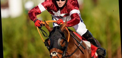 Why isn't Tiger Roll running in the Grand National? Defending champion OUT following spat over weight