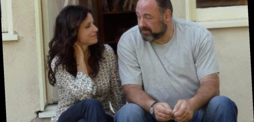 What Surprised Julia Louis-Dreyfus About James Gandolfini on the 'Enough Said' Shoot