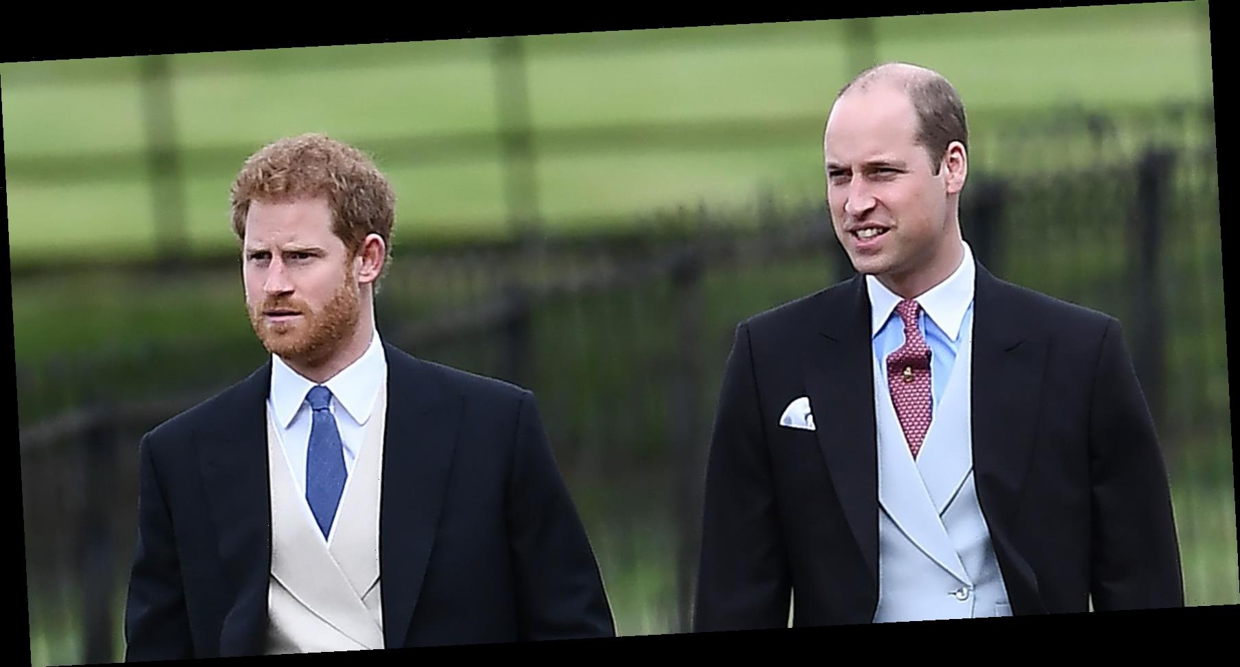 Senior Palace Source Gives Icy Response to Claims Harry and William's Convos Aren't Going Well