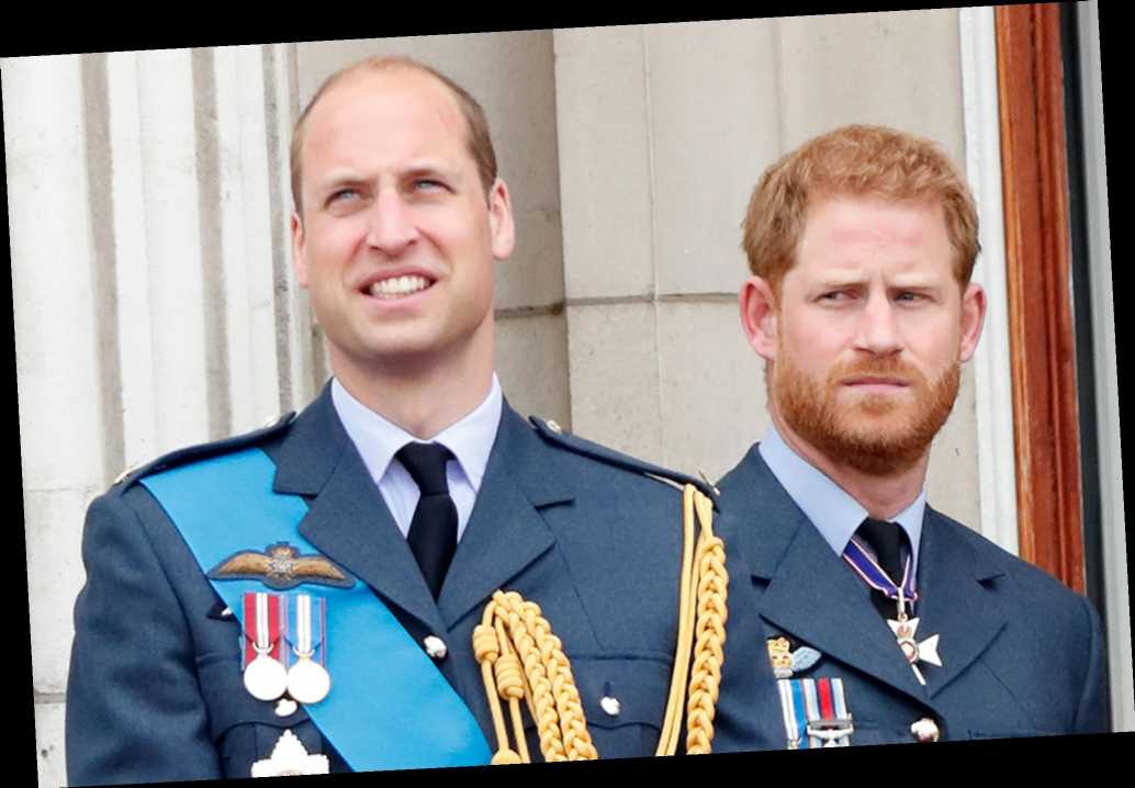 Prince Harry Says Prince William 'Can't Leave the System:' 'My Father and Brother Are Trapped'