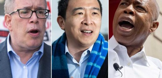 Andrew Yang has strong lead over Stringer, Adams in NYC mayoral primary: poll