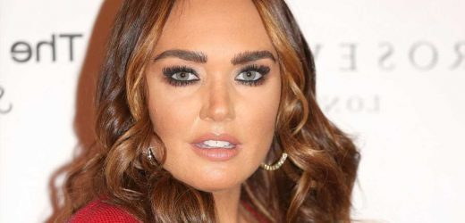 Burglar admits involvement in £25million raid on F1 heiress Tamara Ecclestone's home