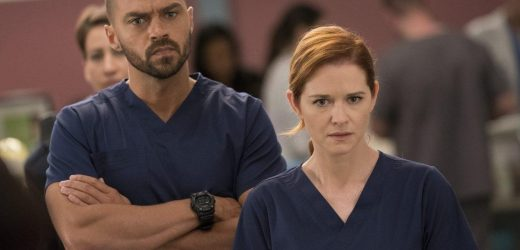 'Grey's Anatomy': Why Some Fans Think April 'Never Deserved' Jackson