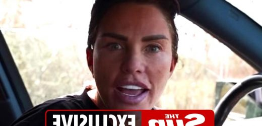Katie Price horrified as she's banned from driving for another 6 months the same week she's due to be back on the roads
