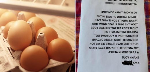 Office worker gets revenge on fridge thief who stole free-range eggs with 'genius' note