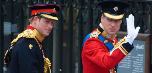 Prince William Made a Joke About Prince Harry During His Wedding Speech