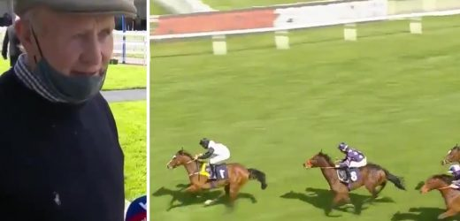 Shock 150-1 winner to open season at Windsor as Arboy Will stuns punters despite pre-race scare and some magic cream