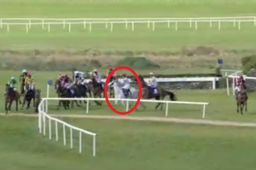 Tragedy as fan favourite racehorse Some Neck dies following disastrous mid-race mix-up at Punchestown Festival