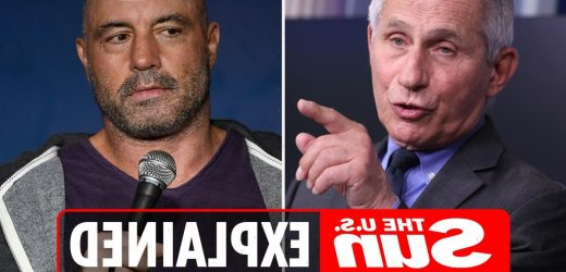 What did Dr. Fauci say about Joe Rogan?